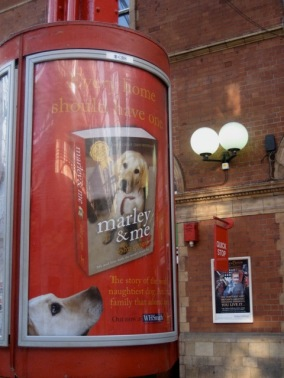 marley and me synopsis